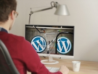 consulenza-1-ora-wordpress-cdm